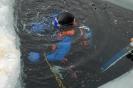 Eistauchen 2008_16